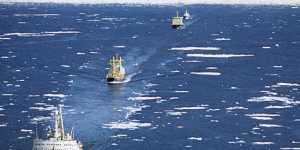 COVID и море: гуманитарная катастрофа мирового торгового флота