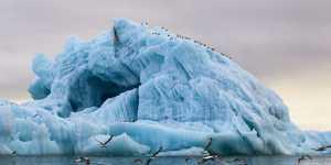 Международный арктический форум пройдет в 2021 году в Петербурге