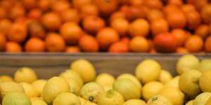 Лимон и чеснок стали одними из немногих продуктов, подешевевших по итогам первого полугодия