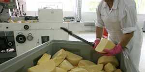 Названы условия, которые привлекут россиян в сферы занятости мигрантов