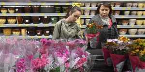 Россияне увеличили интерес к домашнему цветоводству