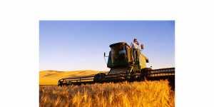 Утверждена новая госпрограмма по вовлечению в оборот сельских земель