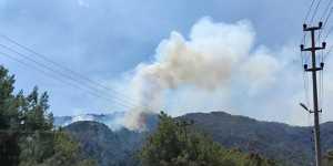 Агентство DHA сообщило об эвакуации трех отелей в турецком Бодруме из-за лесного пожара